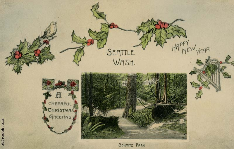 Copy of O. T. Frasch Image 348 - Schmitz Park Seattle - Behrendt