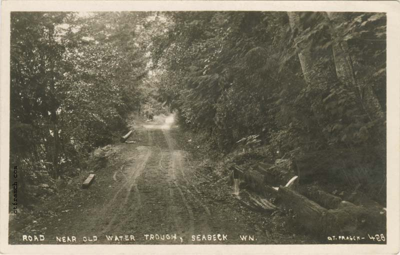 O. T. Frasch Image 428 - Road Near Old Water Trough Seabeck Wn