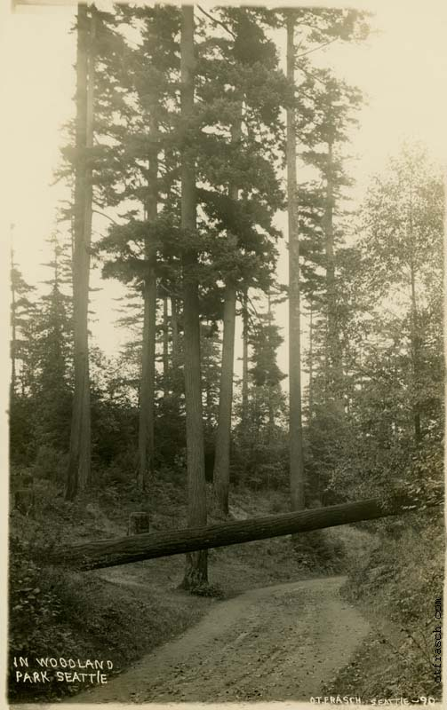 O. T. Frasch Image 90 - In Woodland Park Seattle)