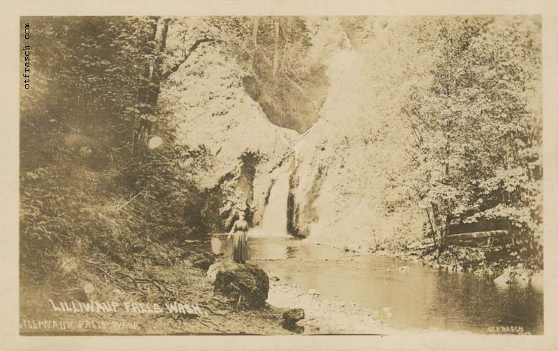 Copy A of O. T. Frasch Image 913 - Lilliwaup Falls Wash.