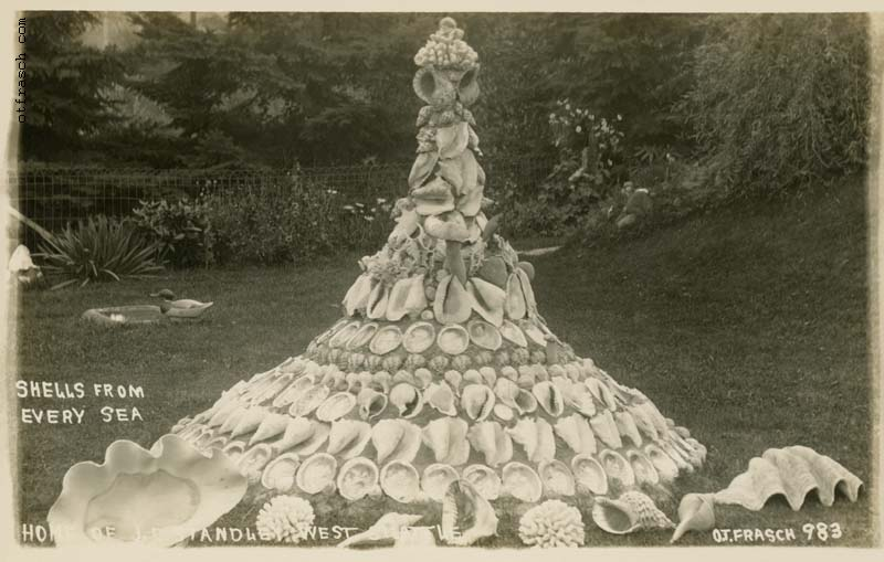 Image 983 - Shells from Every Sea Home of J.E. Standley West Seattle