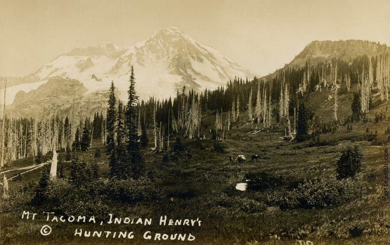 Copy of Image R9 - Mt. Tacoma, Indian Henry's Hunting Ground